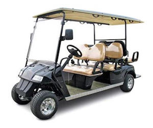 SIX SEATER GOLF CART RENTAL • 30A Relax on exciting golf, natural golf, lazy golf, peaceful golf, cute golf, captain kangaroo golf, playing golf,